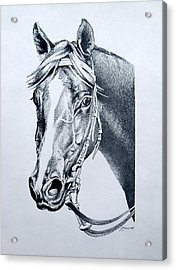 Handsome Acrylic Print by Patricia Howitt