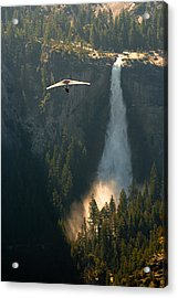 Hang Glider In Yosemite National Park Acrylic Print by Celso Diniz