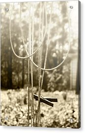 Hang It Up Acrylic Print by Kristie  Bonnewell