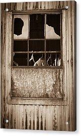 Hangers In The Window Acrylic Print