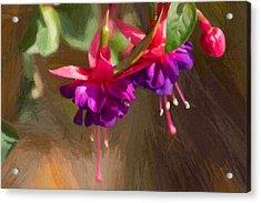 Hanging Flower Basket Acrylic Print