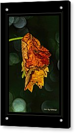 Hanging Gold Framed Acrylic Print