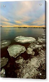 Acrylic Print featuring the photograph Hanging On by Amanda Stadther