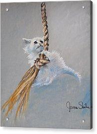 Hanging On Acrylic Print by James Skiles