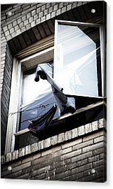 Hanging Out Acrylic Print by Ian Wilson