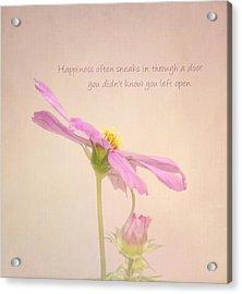 Happiness Acrylic Print by Kim Hojnacki