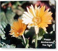 Happy Anniversary You Two Acrylic Print by Belinda Lee