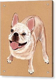 Happy Dog Acrylic Print