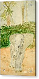 Happy Fellow Acrylic Print by Katie Spicuzza