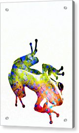 Happy Frog Acrylic Print by Darla Wood