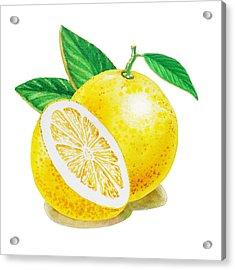 Acrylic Print featuring the painting Happy Grapefruit- Irina Sztukowski by Irina Sztukowski