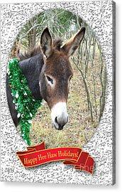 Happy Hee Haw Holidays Acrylic Print