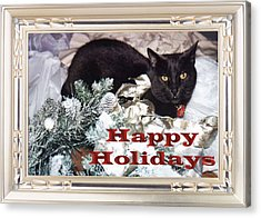 Happy Holidays Acrylic Print by Eve Riser Roberts