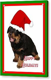 Happy Holidays Rottweiler Christmas Greetings  Acrylic Print by Tracey Harrington-Simpson