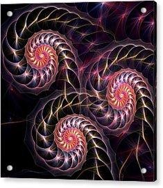 Happy Lights Acrylic Print by Anastasiya Malakhova