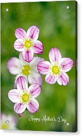 Happy Mothers Day Acrylic Print by Rebecca Cozart
