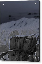 Happy On The Edge Acrylic Print by Jeremy Rhoades
