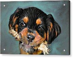 Happy Puppy Acrylic Print by Angela A Stanton
