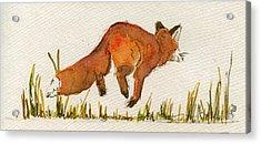 Happy Red Fox Acrylic Print by Juan  Bosco