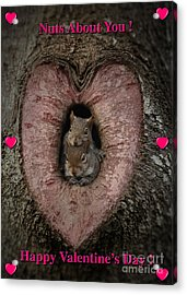 Happy Valentine Squirrels Acrylic Print by D Wallace
