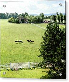 Haras De Meautry Stud Farm Acrylic Print