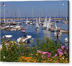 Acrylic Print featuring the photograph Harbor In Bloom by Caroline Stella