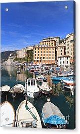 harbor in Camogli - Italy Acrylic Print