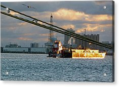 Harbor Life Acrylic Print by John Collins