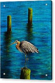 Harbor Sentry Acrylic Print by C Steele