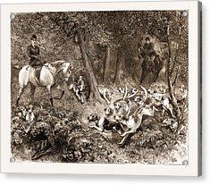 Hard Pressed A Woodland Scene Acrylic Print