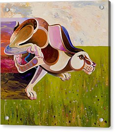 Hare Borne Acrylic Print by Bob Coonts