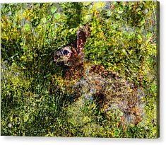 Acrylic Print featuring the digital art Hare In Hiding by J Larry Walker