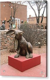 Hare In Santa Fe Acrylic Print