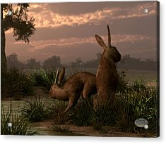 Hares In The Wetlands Acrylic Print by Daniel Eskridge