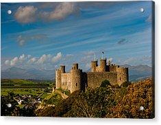 Harlech Castle Acrylic Print by David Ross
