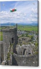 Harlech Castle Tower Acrylic Print by Jane McIlroy
