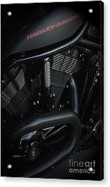 Harley Davidson Black Acrylic Print by Vineesh Edakkara