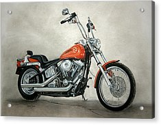Harley Davidson Acrylic Print by Heather Gessell