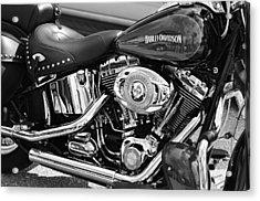 Harley Davidson Monochrome Acrylic Print by Laura Fasulo