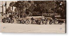 Harley Line Up Acrylic Print by Laura Fasulo