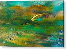 Harmony Acrylic Print by Debra LePage