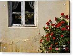 Acrylic Print featuring the photograph Flower Talk by Terry Garvin
