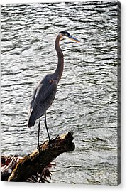Haron Over The Water Acrylic Print by Adam LeCroy