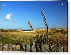 Harris Outer Hebrides Acrylic Print by The Creative Minds Art and Photography