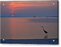 Harry The Heron Fishing On Santa Rosa Sound At Sunrise Acrylic Print by Jeff at JSJ Photography