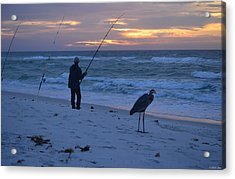 Harry The Heron Fishing With Fisherman On Navarre Beach At Sunrise Acrylic Print by Jeff at JSJ Photography