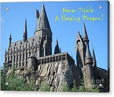 Harry's Hogwarts Acrylic Print by Marguerita Tan
