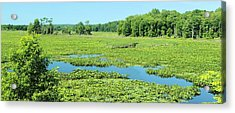 Acrylic Print featuring the photograph Hartstown Marsh Panorama by Dennis Lundell