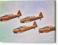 Harvard Aircraft  Acrylic Print by Cathy  Beharriell