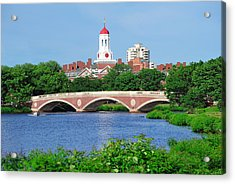 Harvard University Campus In Boston Acrylic Print